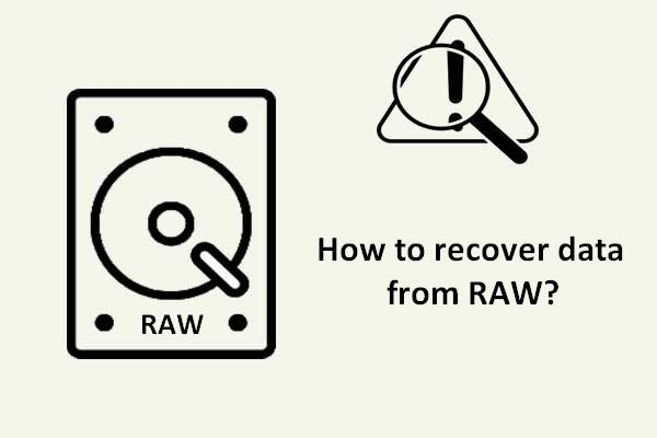 raw disk file recovery thumbnail