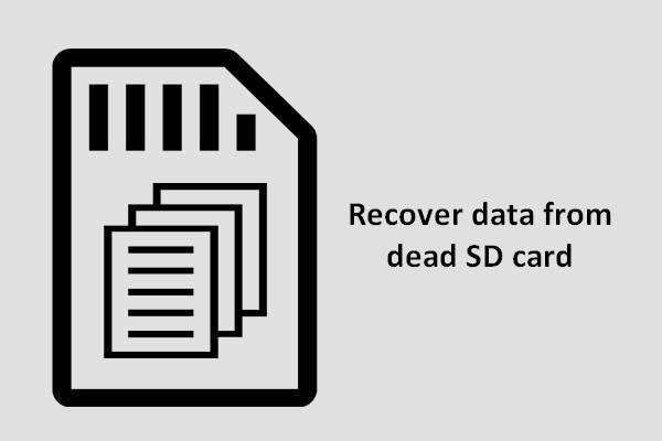 Recover Data From Dead SD Card With This Easy And Safe Way