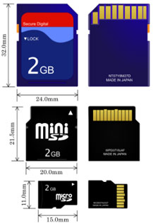 different forms of sd card