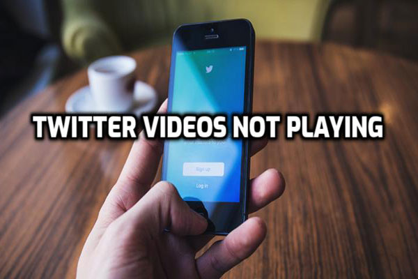 Solved - Twitter Video Won't Play on iPhone/Android/Chrome