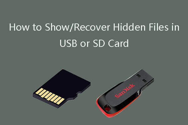 usb memory card reader software free download